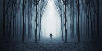 rsz_bigstock-dark-spooky-forest-with-silhou-42225886